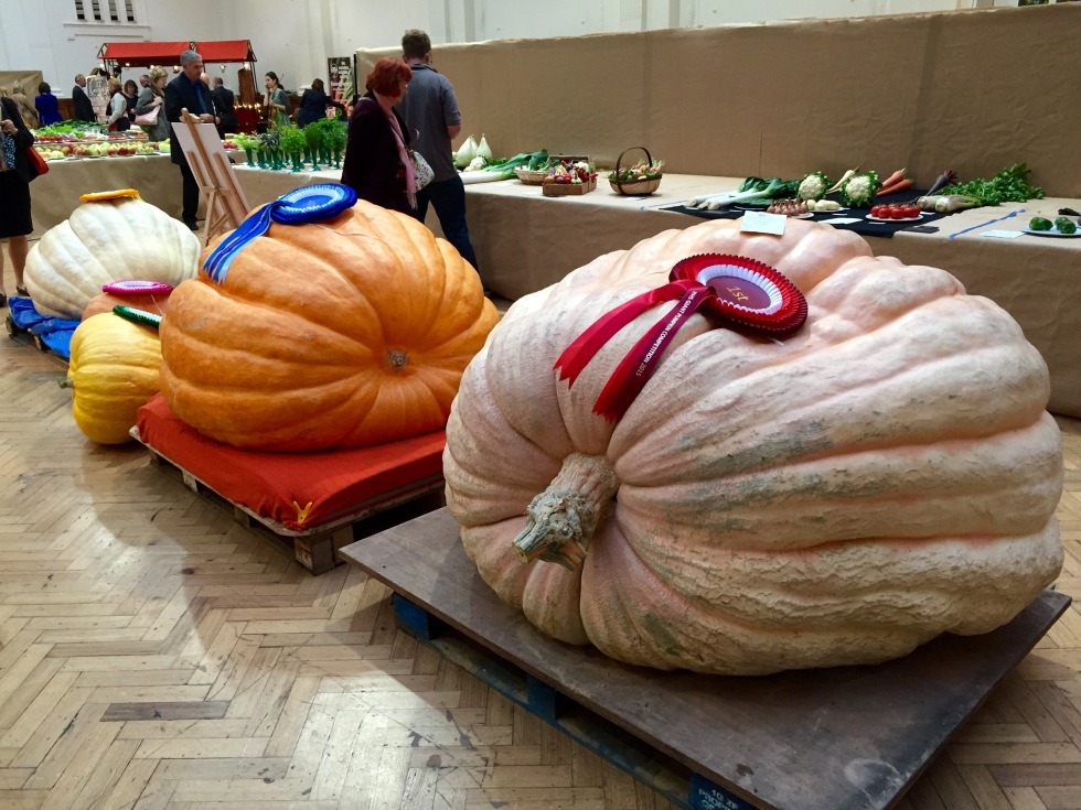 The winning entries in the giant pumpkin competition ranged between 68kg and 509kg