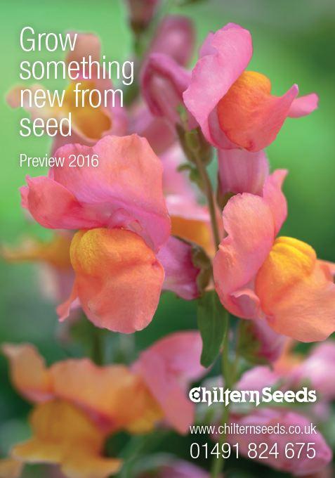 chiltern seeds 1