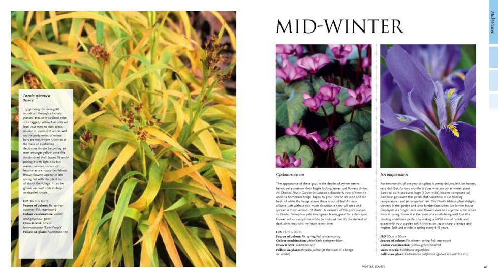 365 Days of Colour in Your Garden, Nick Bailey, Jonathan Buckley, Kyle Books