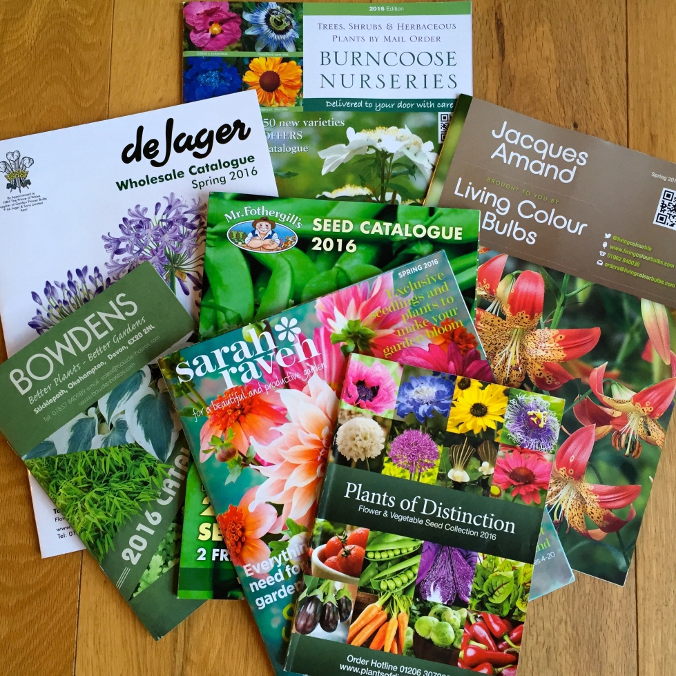 Spring bulb, seed and plant catalogues, January 2016