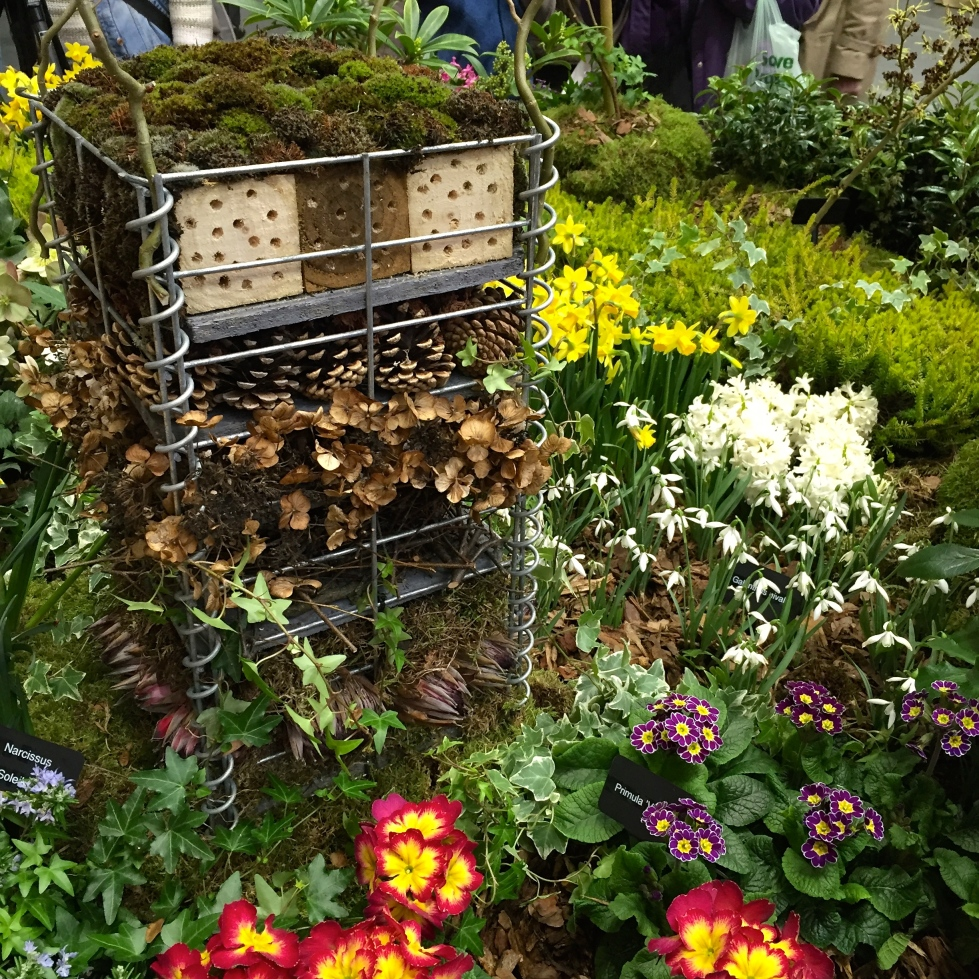A pollinator friendly garden created by John Cullen Designs