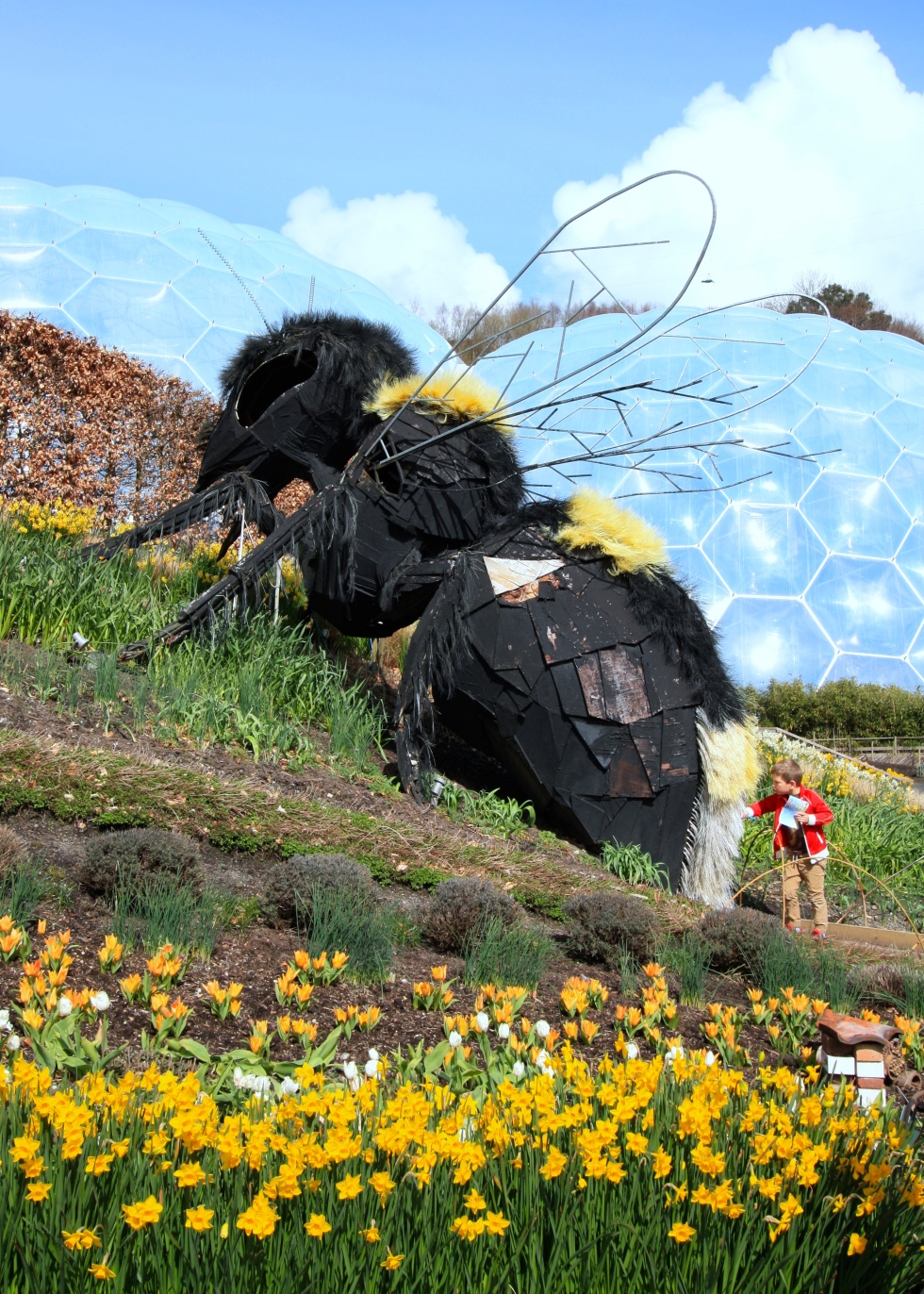 Children and adults alike are fascinated by The Bee's hairy 'tail'