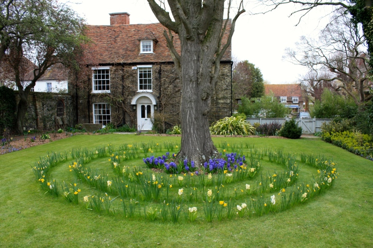 An amusing spiral of spring bulbs in the Yellow Garden