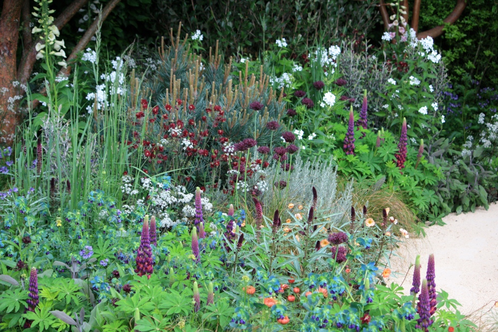 Swathes of perennials occupying the shade at the end of The Beauty of Mathematics Garden