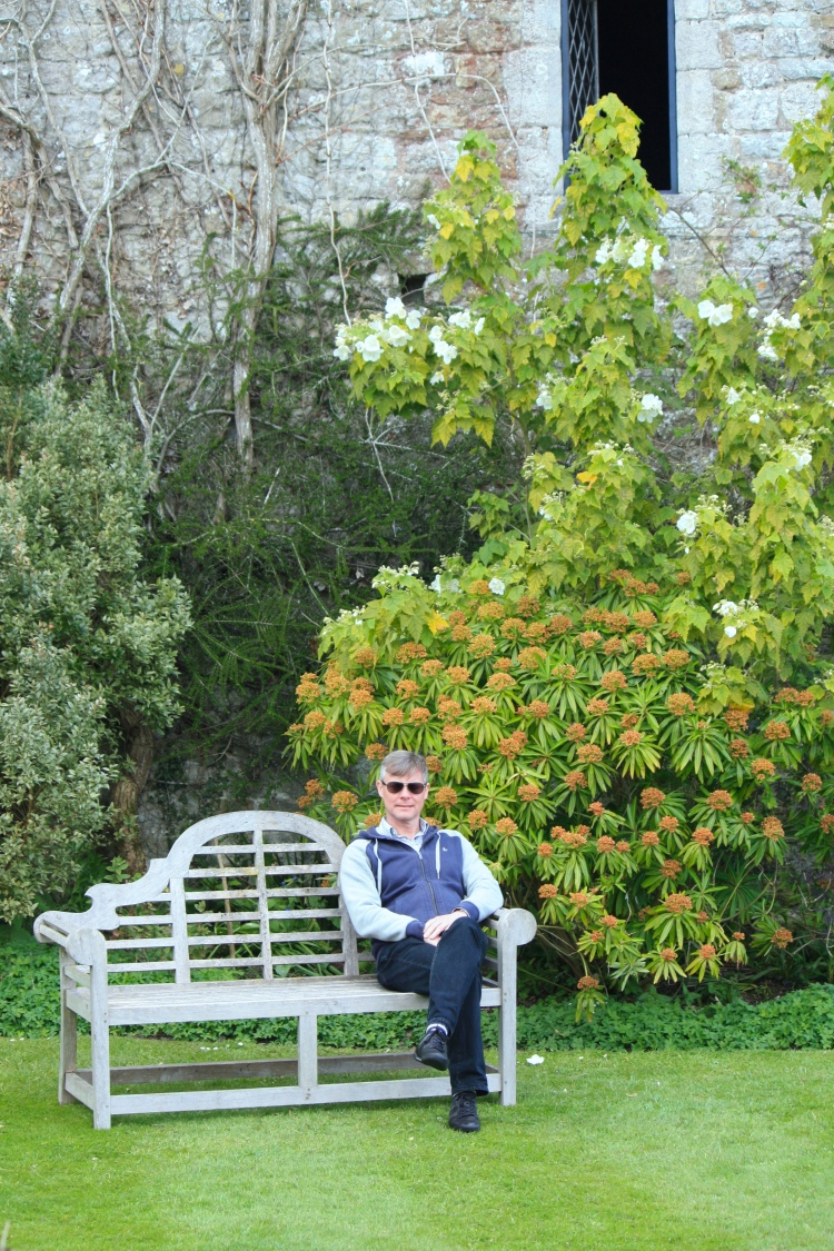 "A Lutyens bench, Euphorbia mellifera, Abutilon vitifolium ""Album"" and Him Indoors"