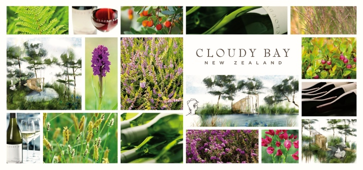 Cloudy Bay Garden, Chelsea Flower Show 2016