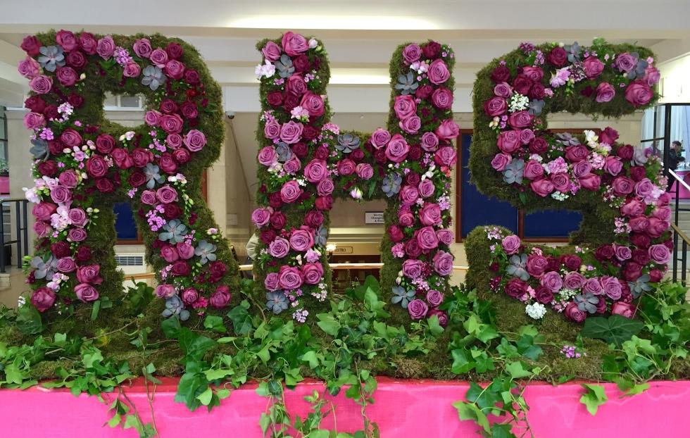 RHS London Rose Show 2016
