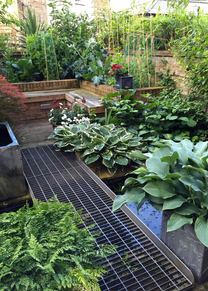 London verdure