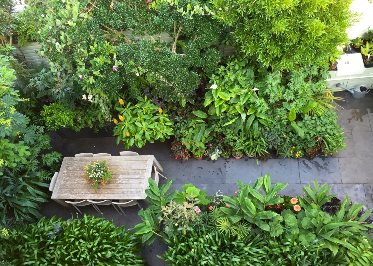 An aerial view of the garden. Standing room only!