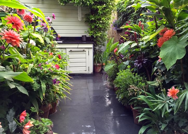 The Watch House garden, August 2016
