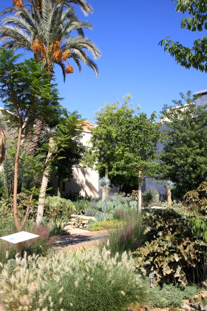 The exotic garden, Le Jardin Secret, Marrakech, September 2016