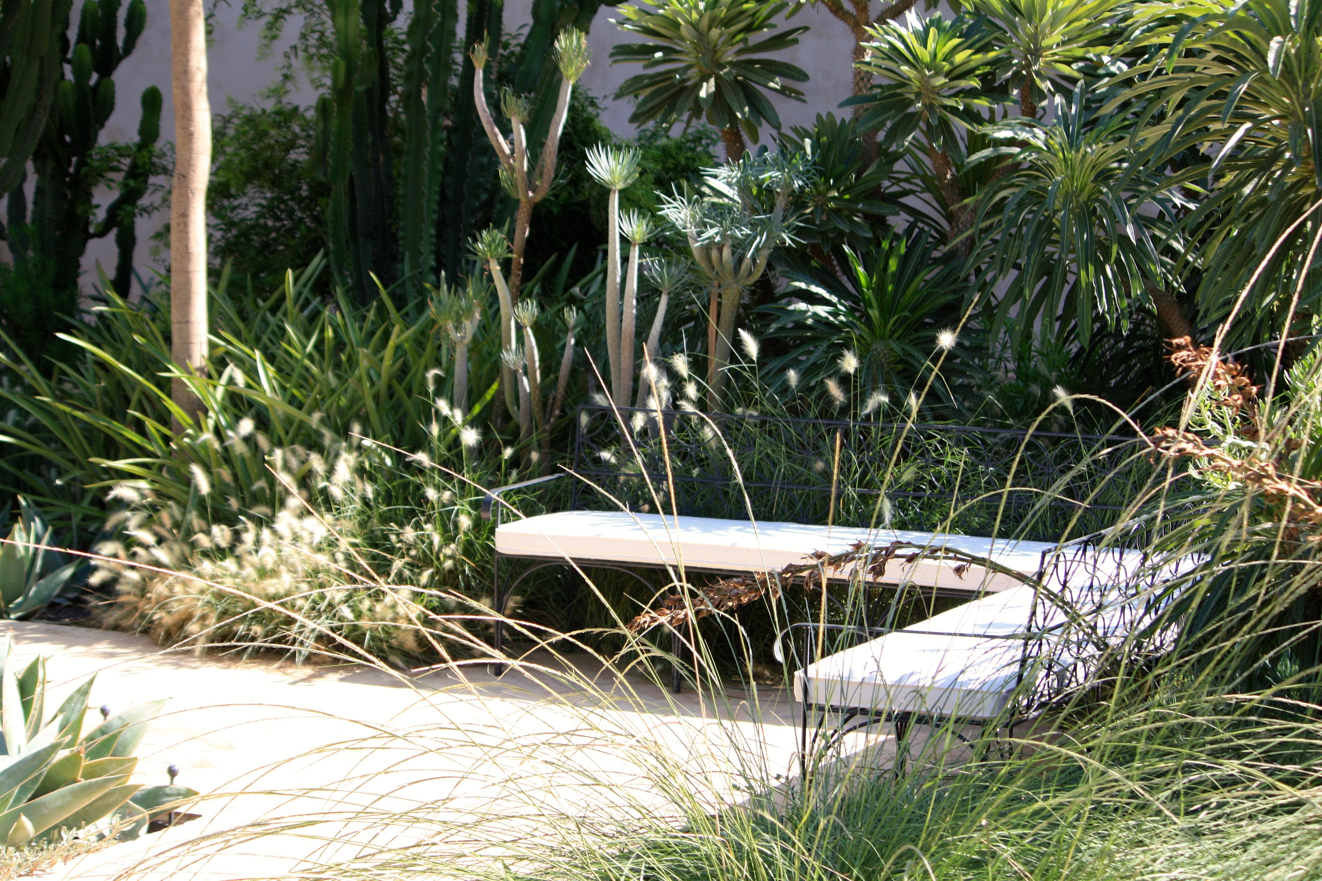 Tropical Gardens – The Frustrated Gardener