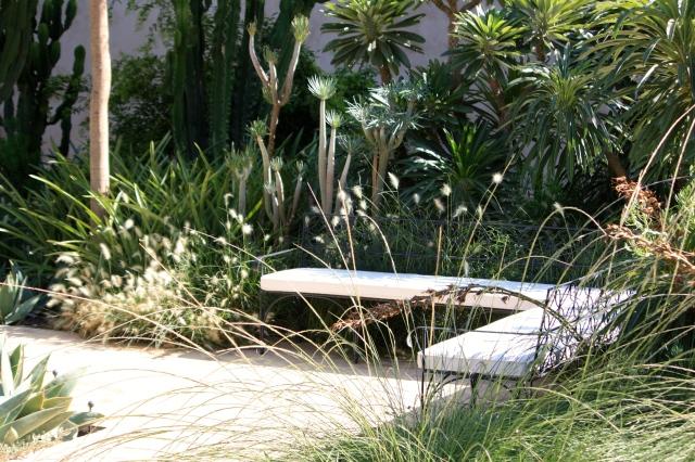seating and senecio, the exotic garden, Le Jardin Secret, Marrakech, September 2016