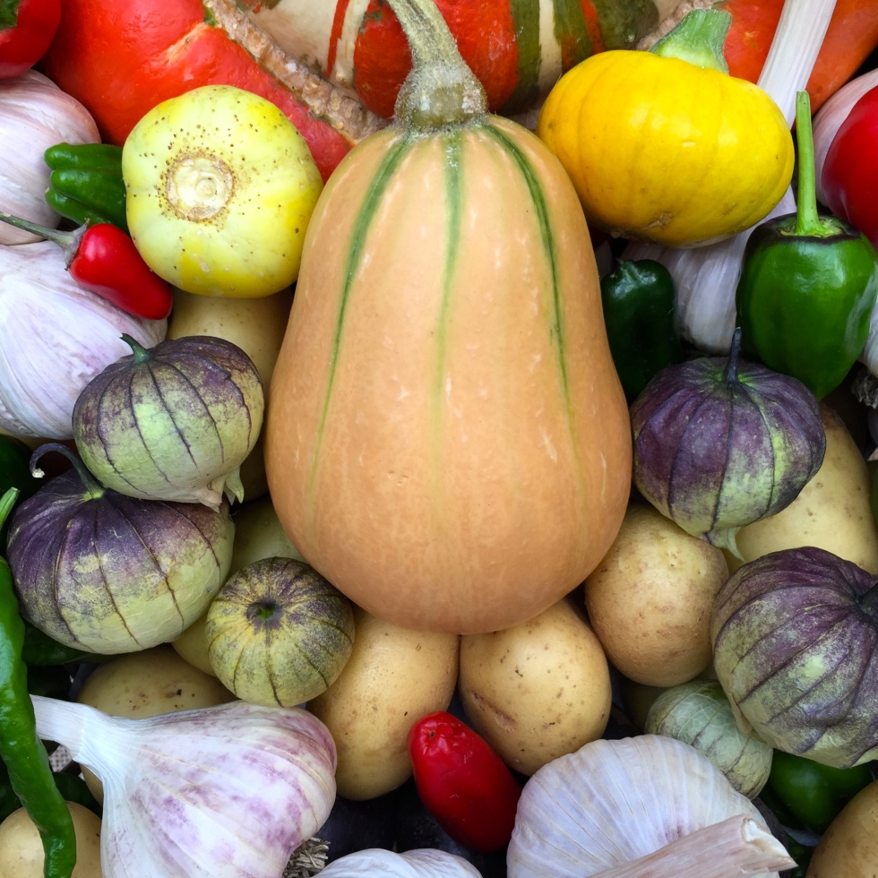 The first prize winning basket of vegetables
