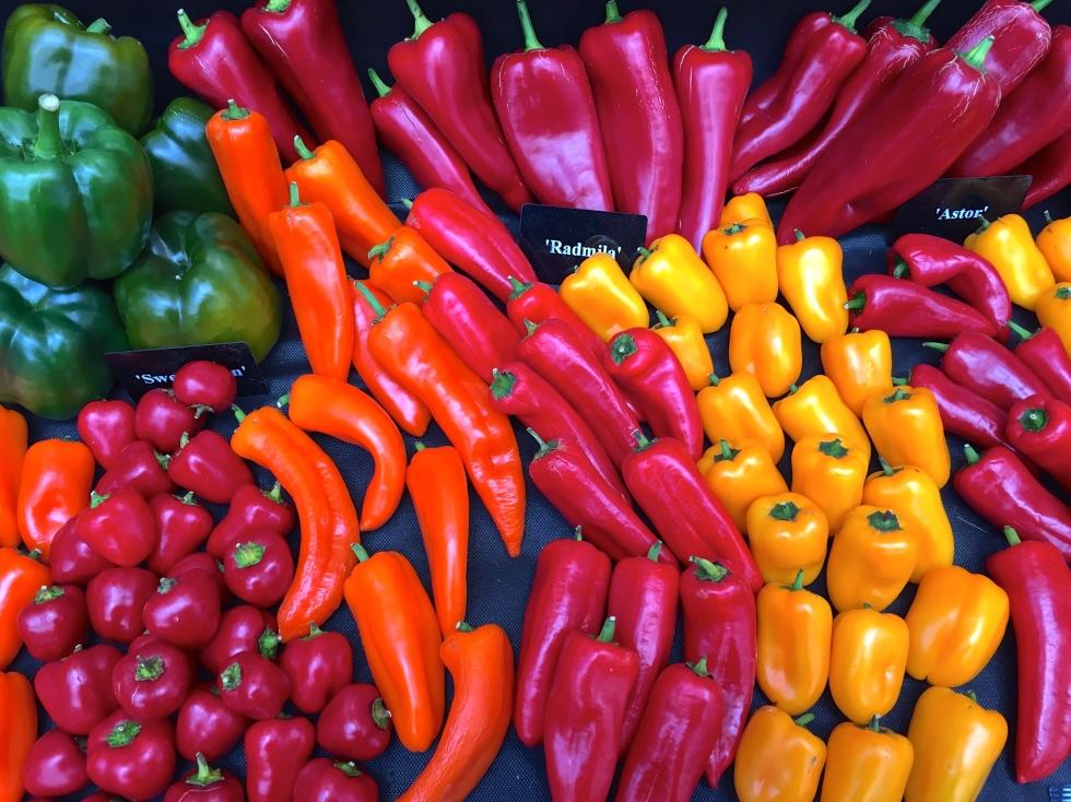 Eye-popping peppers