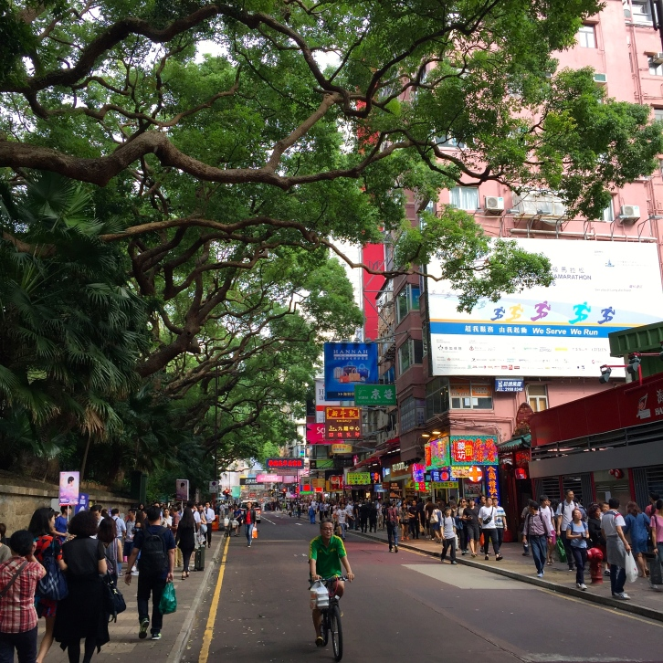 Elderly camphor trees (Cinnamomum camphora) shade the bustling streets surrounding Kowloon Park