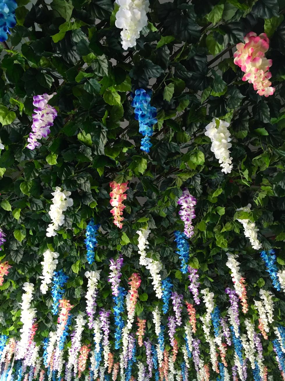 plastic wisteria, Shenzhen, O
