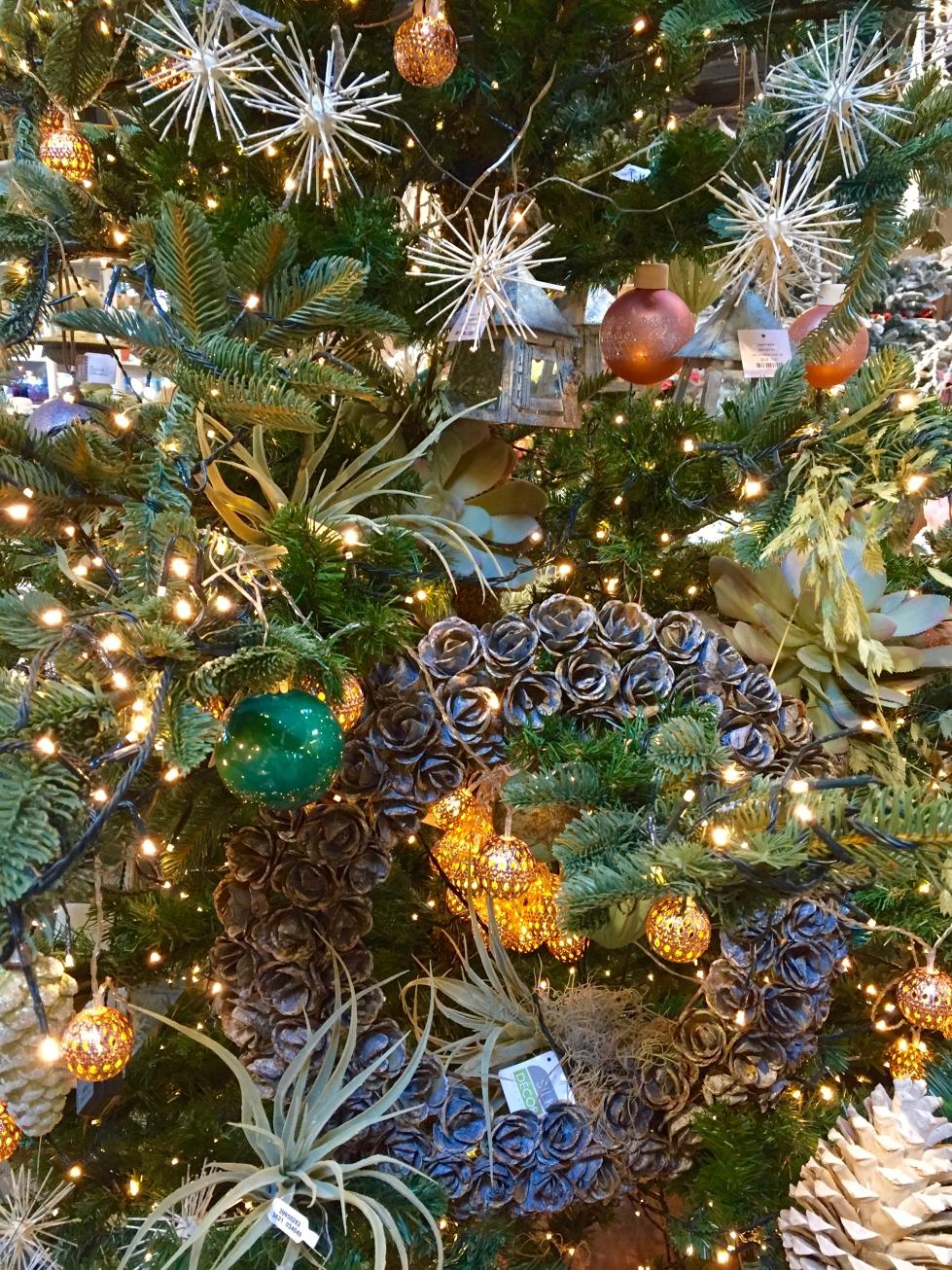 Christmas trees decoration, Terrain, Westport, December 2016