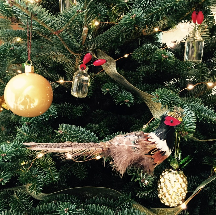 Pheasant Christmas decoration, The Watch House, December 2016