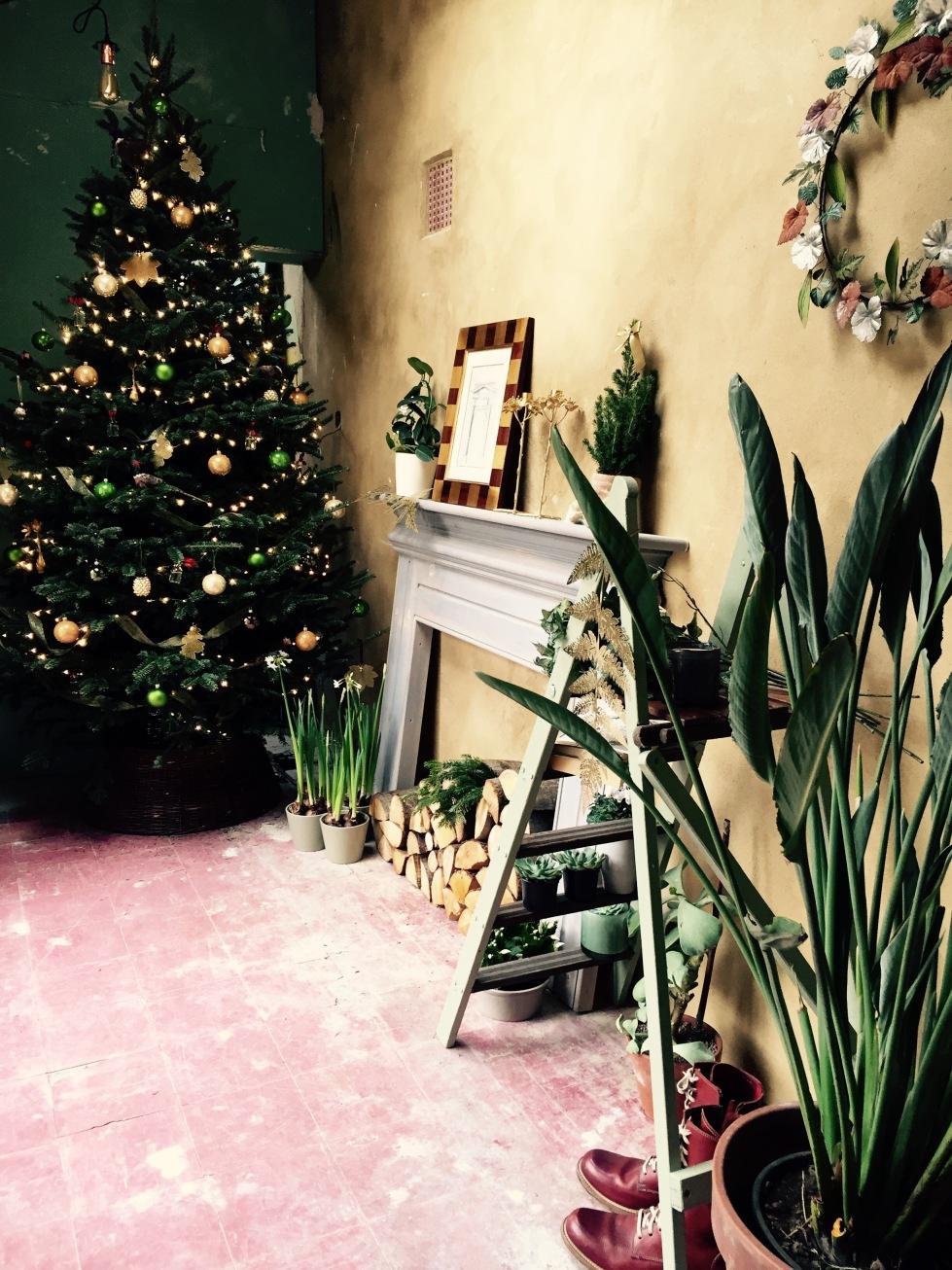 Garden room, The Watch House, December 2016