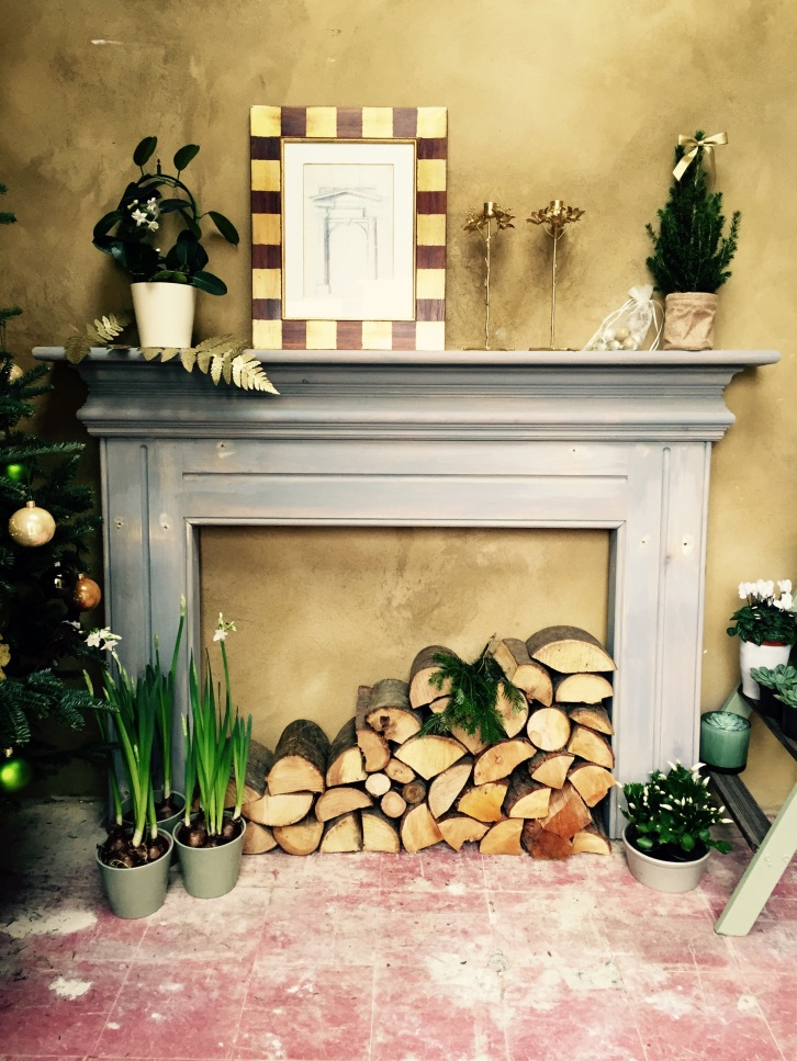 Fireplace with plants, The Watch House, December 2016