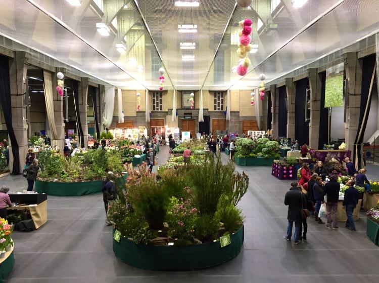 RHS Lawrence Hall set for spring