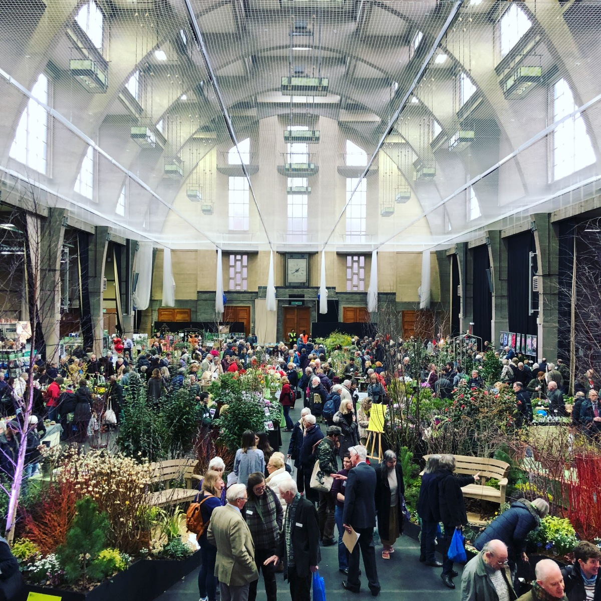 RHS London Early Spring Plant Fair 2018