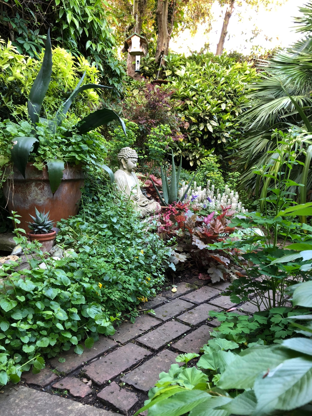 Ten Top Tips for Small, Shady Urban Gardens - The ... on Shade Ideas For Backyard id=32623